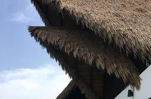 VIVA Weathered Palm 32 2
