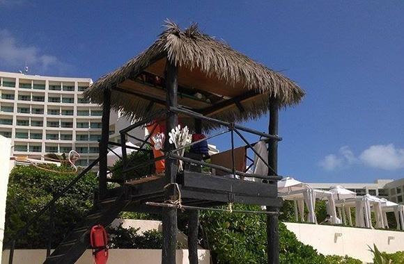 VIVA Weathered Palm 51