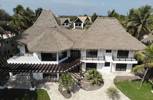 VIVA Weathered Palm 56